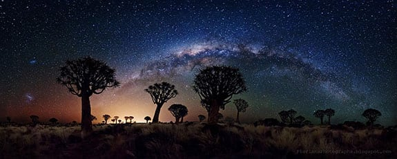 diversity-milky-way-night